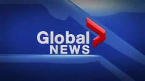 Global News Hour at 6 Edmonton: Nov. 22