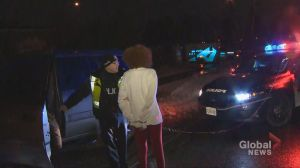 Alleged drunk driver ploughs through police scene in Scarborough