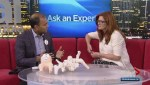 Ask an Expert: Hip dysplasia