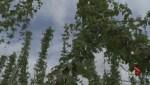 Fire tears through farm at critical time of year
