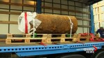 60,000 people evacuated as police defuse massive World War II bomb in Frankfurt, Germany