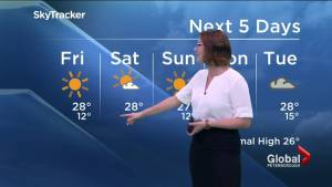 Sunshine continues for the long weekend