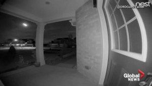 Doorbell cam catches video of meteor in Chicago
