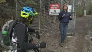 Squamish protects bear family