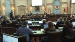 Kingston city council declares climate emergency
