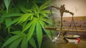 Federal court green lights homegrown medical marijuana