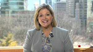 'I really do believe that [the choice is] between myself and Mr. Ford': Horwath