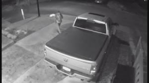 Auto crime prevention in B.C.