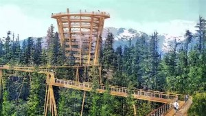New attraction could soon be coming to Squamish in 2020