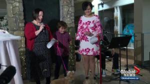 Edmonton Puppies Get Married