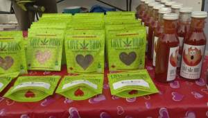 Pot advocates gather for 4/20 in advance of legalization