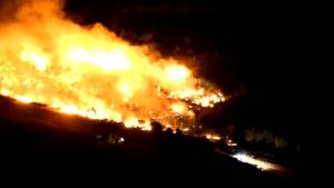 Brush fires blaze across 13 acres in California