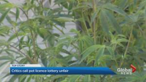 Applicants wait for results of Ontario cannabis store lottery