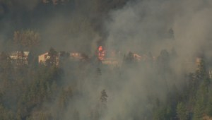 Several homes destroyed in wildfire in Lake Country