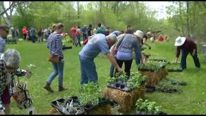 GreenUP plant sale in Peterborough