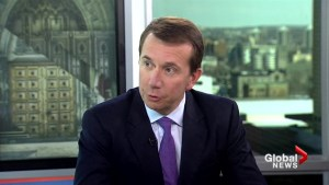 Electoral integrity must balance freedom of speech: Brison