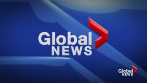 Global News at 5 Lethbridge: Mar 28