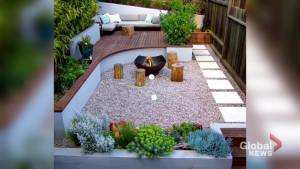 Creating the perfect backyard space