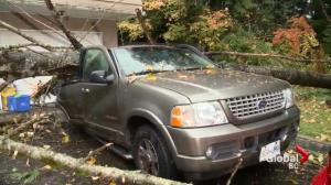 Clean up underway from first of three Fall storms to hit Metro Vancouver
