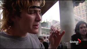 New Details emerge on federal pot legalization