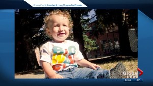 Alberta couple denied application for legal fee money in case of their son's death