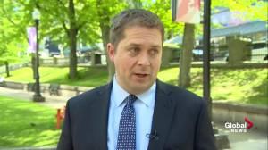 Scheer: Trudeau has failed to prepare for possibility of U.S. tariffs