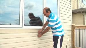 Alberta hail storm damages homes, vehicles