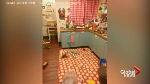 6.4 magnitude earthquake rattles Taiwanese hostel