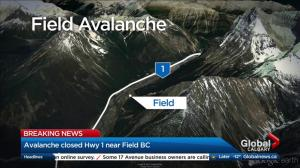 Avalanche closes Trans-Canada Highway near B.C.-Alta. border