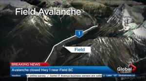 Avalanche closes Trans-Canada Highway near B.C.-Alta. border