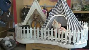 Open House: Style friendly pet furniture