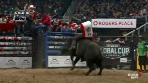 Professional bull riding is back in Winnipeg