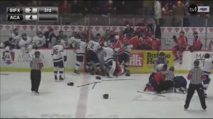 Hockey brawl erupted after player shamed sex assault victim