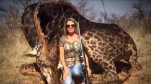 "U.S. hunter triggers outrage after posing with ""trophy kill"" giraffe"