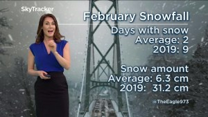 Weather Forecast, February 20th 2019