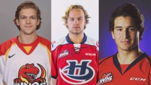3 Alberta hockey players in hospital, 1 in life-threatening condition after incident at bachelor party