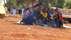 Syrian families seek shelter in olive groves after fleeing bombs