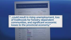 B.C. mayors call on Ottawa to help forestry industry