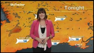 Sunshine to finish off the week, chance of rain on the weekend
