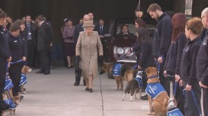 Queen Elizabeth II visits animal home