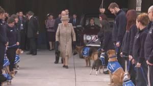 Queen Elizabeth II visits animal home