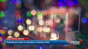 Vancouver Park Board on standby in Stanley Park after Bright Nights cancelled