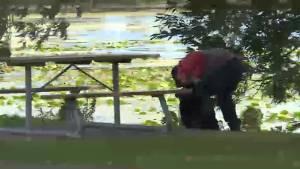 Kingston community joins M.P. picking up litter