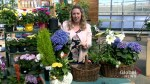 Adding a touch of spring with Easter baskets