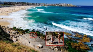 Proposal on Bondi Beach gets inadvertently photographed, internet helps track couple down