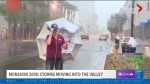 Meteorologist battles storm in Phoenix while reporting on live TV