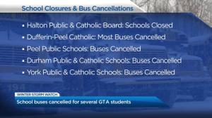 GTA sees multiple school closures, bus cancellations as winter storm hits region