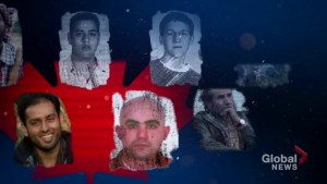 More than 300 terrorism deaths and injuries attributed to Canadians since 2012