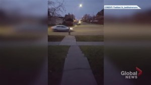 Video shows cars whizzing by boy waiting to cross residential Calgary street