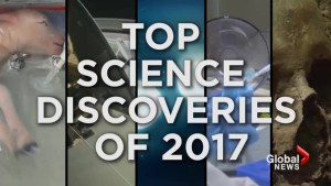 Top science discoveries of 2017